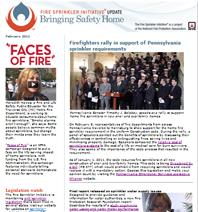 February 2011 FSI newsletter
