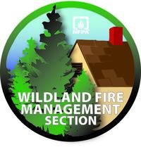 WFSM Logo