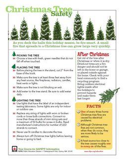Christmas Tree Safety Sheet Screenshot