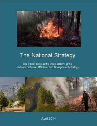 National Strategy report