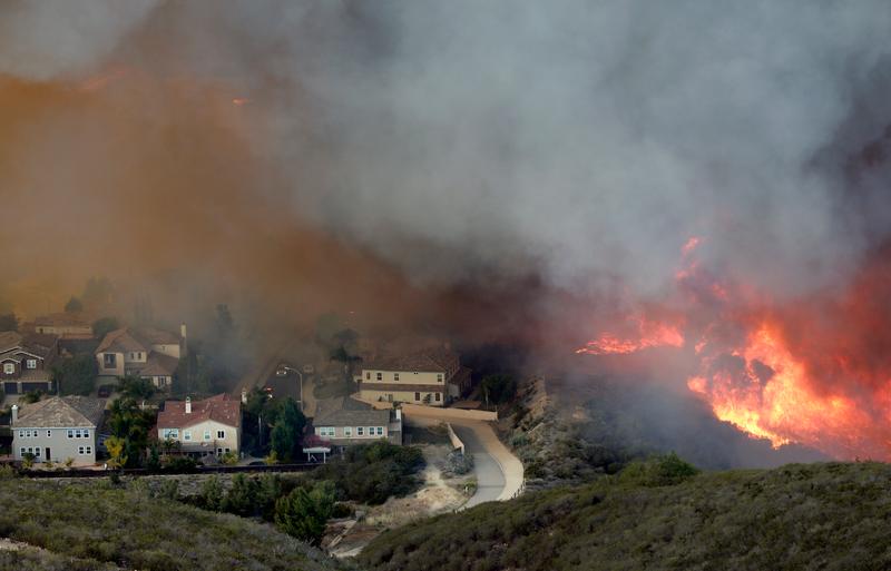 Wildfire blog