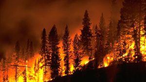 Wildfire Photo Credit KFSM KXNW 5Newsonline.com AR
