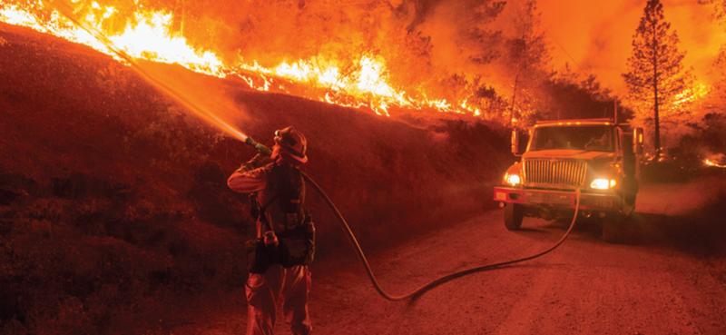 Wildfire blog photo