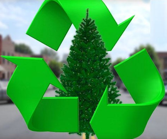 Recycle Christmas Tree 2
