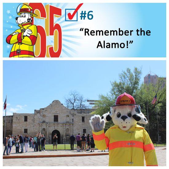 #6 - Alamo