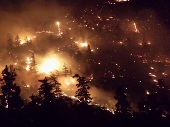 Govt complex fire night sky