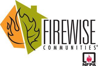 Firewisenfpalogo500
