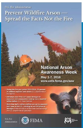 Wildfire Arson