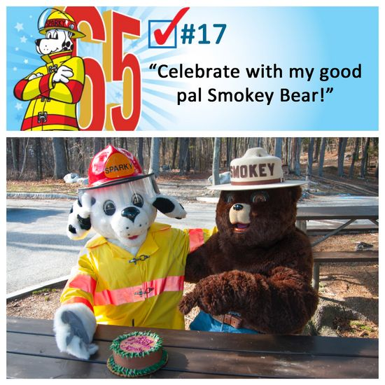 #17 - Smokey Bear (002)